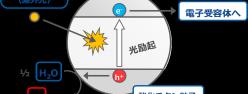 酸化チタンの光触媒反応